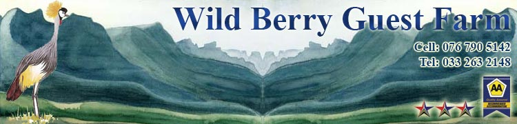 Mooi River Accommodation – Wild Berry Guest Farm
